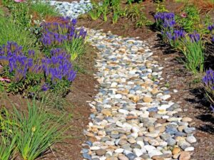 picture of french drain