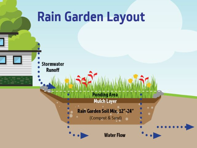 diagram of rain garden